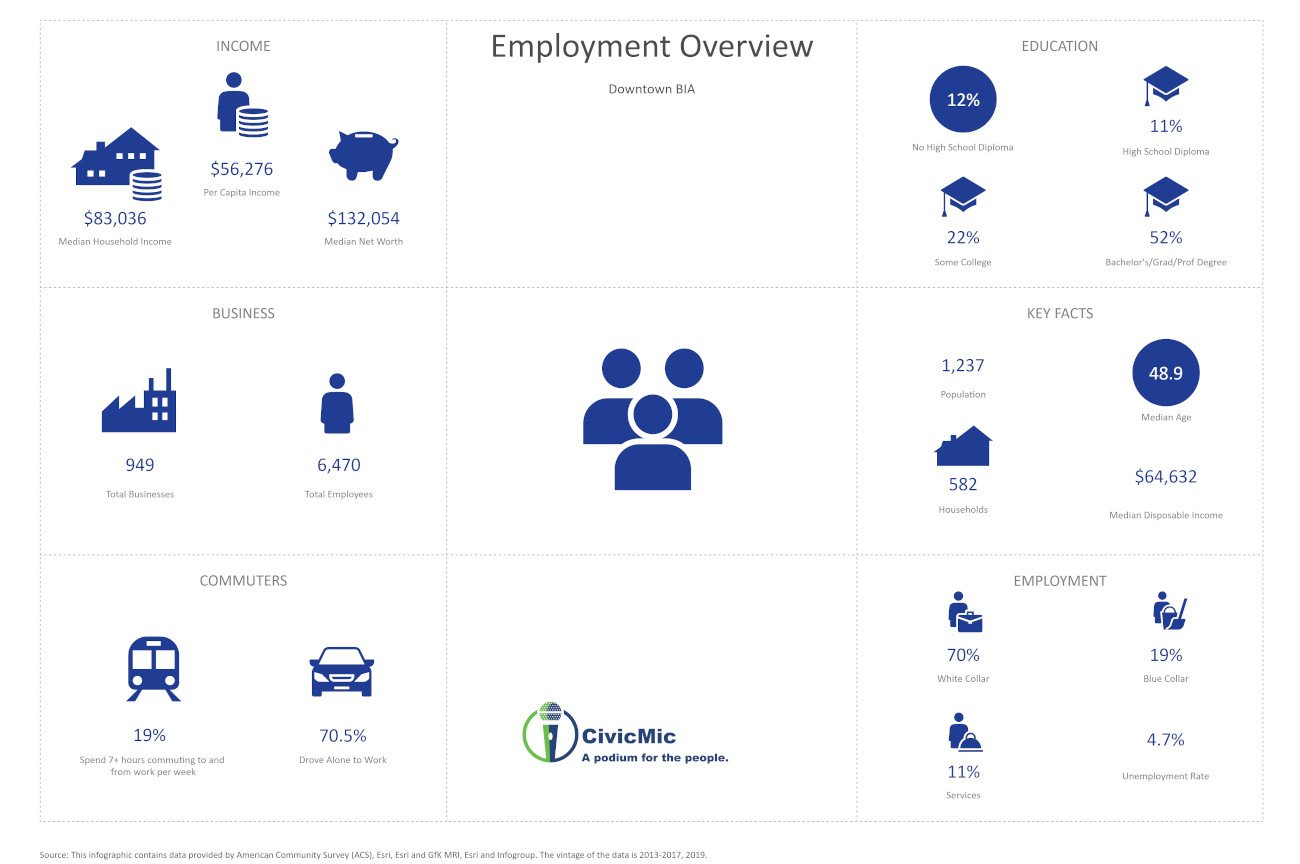 DSMA Employment Overview